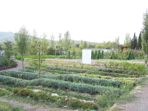 El jard n bot nico el jard n de los sentidos ceama - El jardin de los sentidos ...
